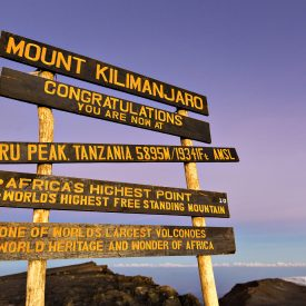 Kilimanjaro (Northern Circuit)