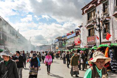 Reis Tibet Lhasa Potala Shigatse Gyantse Everest cultuur trektocht   Snow Leopard (11)
