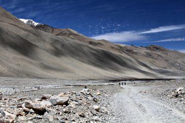 Reis Tibet Lhasa Potala Shigatse Gyantse Everest cultuur trektocht   Snow Leopard (18)