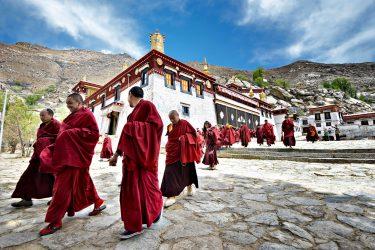 Reis Tibet Lhasa Potala Shigatse Gyantse Everest cultuur trektocht   Snow Leopard (9)