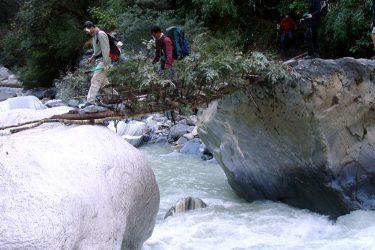 Trektocht Rond de Dhaulagiri Nepal | Snow Leopard (17)