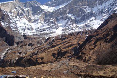 Trektocht Rond de Dhaulagiri Nepal | Snow Leopard (18)