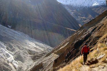 Trektocht Rond de Dhaulagiri Nepal | Snow Leopard (21)