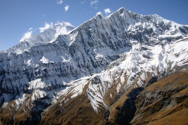 Trektocht Rond de Dhaulagiri Nepal | Snow Leopard (42)