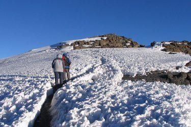 Kilimanjaro (Northern Circuit)
