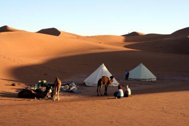 Wandelreis Sahara Woestijn Marrakech Marokko | Snow Leopard (21)
