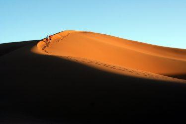 Wandelreis Sahara Woestijn Marrakech Marokko | Snow Leopard (23)