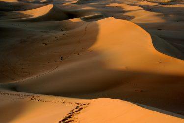 Wandelreis Sahara Woestijn Marrakech Marokko | Snow Leopard (25)
