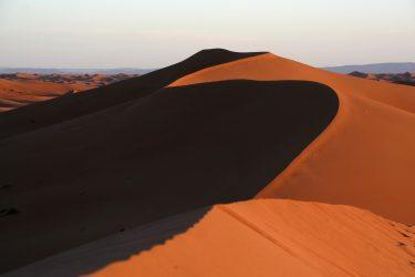 Wandelreis Sahara Woestijn Marrakech Marokko | Snow Leopard (26)