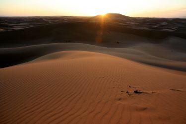 Wandelreis Sahara Woestijn Marrakech Marokko | Snow Leopard (27)