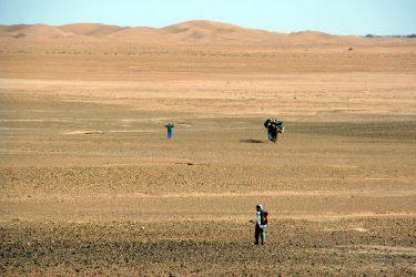 Wandelreis Sahara Woestijn Marrakech Marokko | Snow Leopard (29)