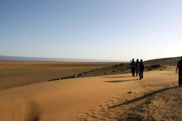 Wandelreis Sahara Woestijn Marrakech Marokko | Snow Leopard (03)