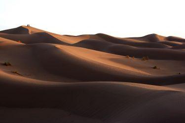 Wandelreis Sahara Woestijn Marrakech Marokko | Snow Leopard (30)