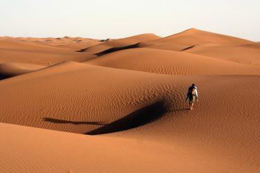 Wandelreis Sahara Woestijn Marrakech Marokko | Snow Leopard (06)