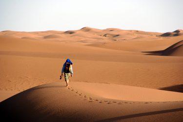 Wandelreis Sahara Woestijn Marrakech Marokko | Snow Leopard (07)