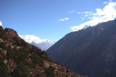Trektocht Snowman Bhutan Himalaya 29 | Snow Leopard