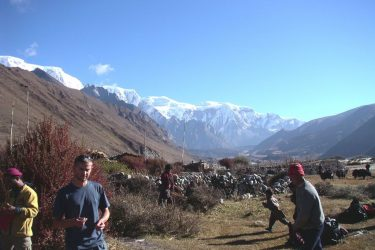 Trektocht Snowman Bhutan Himalaya 32 | Snow Leopard