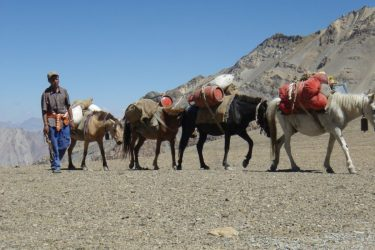 Trektocht Zanskar The Hard Way Ladakh Leh India | Snow Leopard 25