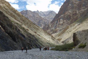 Trektocht Zanskar The Hard Way Ladakh Leh India | Snow Leopard 32