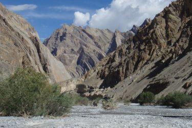 Trektocht Zanskar The Hard Way Ladakh Leh India | Snow Leopard 43