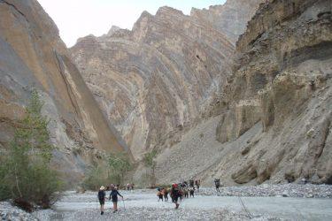 Trektocht Zanskar The Hard Way Ladakh Leh India | Snow Leopard 45