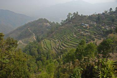 Trektocht Lamjung Himal Basiskamp Nepal | Snow Leopard - husslage 2009 (109)