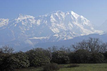 Trektocht Lamjung Himal Basiskamp Nepal | Snow Leopard - husslage 2009 (219)