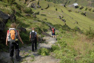 Trektocht Lamjung Himal Basiskamp Nepal | Snow Leopard - husslage 2009 (258)