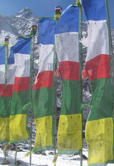 Nepal | Yalung Ri en Langdak (6.220m) Expeditie | Snow Leopard (1)