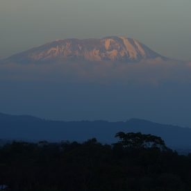 Trektocht beklimming Kilimanjaro Machame route Northern Circuit | Snow Leopard