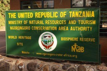 Safari Ngorongoro Serengeti Lake Manyara Tanzania | Snow Leopard (48)