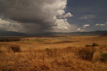 Safari Ngorongoro Serengeti Lake Manyara Tanzania | Snow Leopard (44)