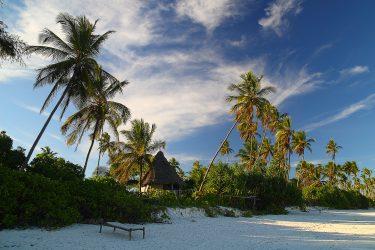 Zanzibar strand Unguja Lodge Stonetown Specerijen   Snow Leopard (11)