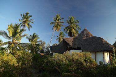 Zanzibar strand Lodge Stonetown Specerijen   Snow Leopard (15)