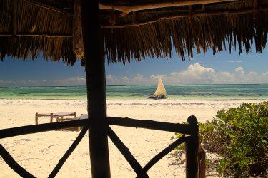 Zanzibar strand Unguja Lodge Stonetown Specerijen   Snow Leopard (04)