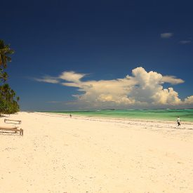 Zanzibar strand Unguja Lodge Stonetown Specerijen | Snow Leopard (07)