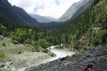 Trektocht Kinnaur Spiti Zanskar Rupshu Leh Ladakh India   Snow Leopard 01
