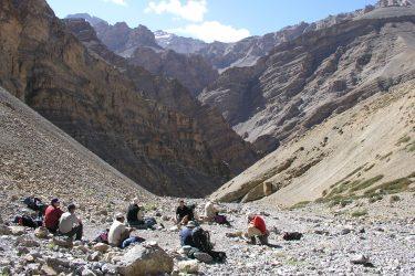 Trektocht Kinnaur Spiti Zanskar Rupshu Leh Ladakh India   Snow Leopard 11
