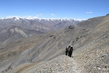 Trektocht Kinnaur Spiti Zanskar Rupshu Leh Ladakh India   Snow Leopard 12