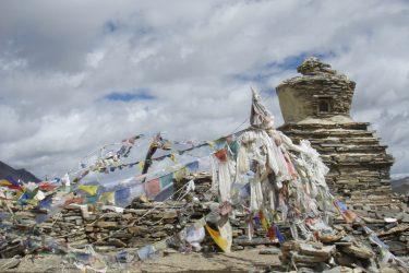 Trektocht Kinnaur Spiti Zanskar Rupshu Leh Ladakh India   Snow Leopard 14