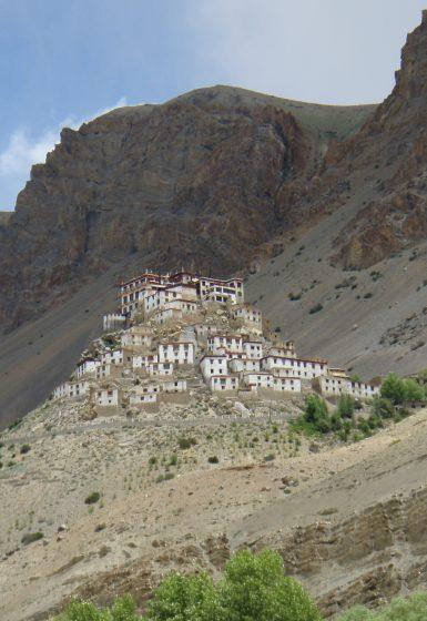 Trektocht Kinnaur Spiti Zanskar Rupshu Leh Ladakh India | Snow Leopard 06