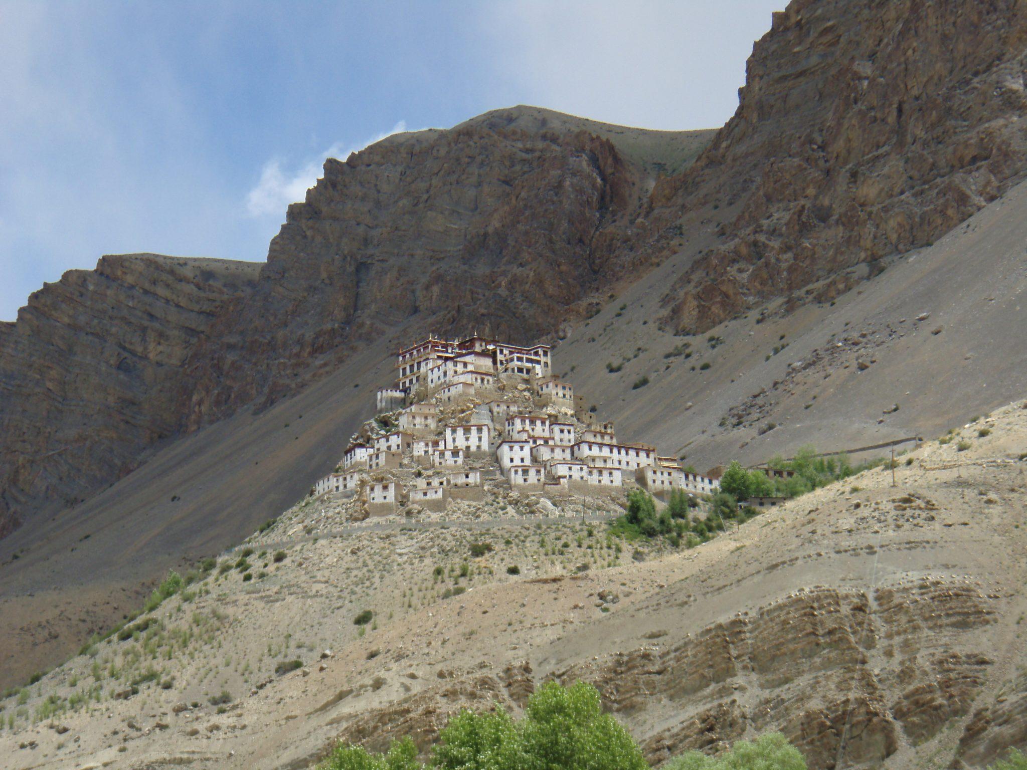 Trektocht Kinnaur Spiti Zanskar Rupshu Leh Ladakh India   Snow Leopard 06