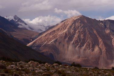 Reis trektocht Ladakh Leh Pangong Tso | Snow Leopard (2)