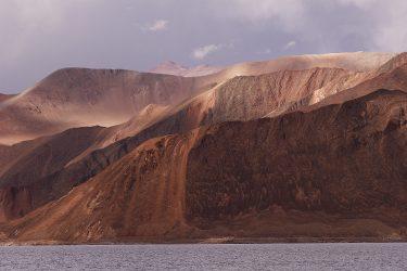 Reis trektocht Ladakh Leh Pangong Tso | Snow Leopard (3)