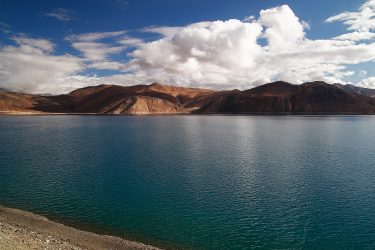 Reis trektocht Ladakh Leh Pangong Tso | Snow Leopard (6)