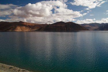 Reis trektocht Ladakh Leh Pangong Tso | Snow Leopard (7)