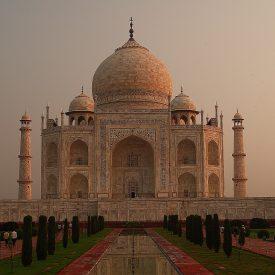 agra jaipur keoladeo Reis New Delhi Delhi Rajasthan Mandawa Pushkar Jaipur Agra Taj Mahal | Snow Leopard (06)
