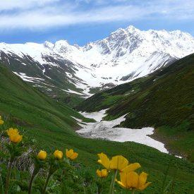 Wandelreis Georgië De Kaukasus | Snow Leopard (10)