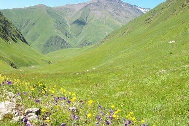 Wandelreis Georgië De Kaukasus | Snow Leopard (5)