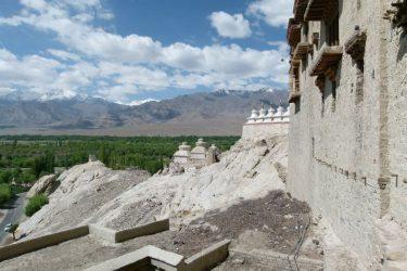 Wandelreis Changtang Pangong Tso Nubra Ladakh India | Snow Leopard (01)